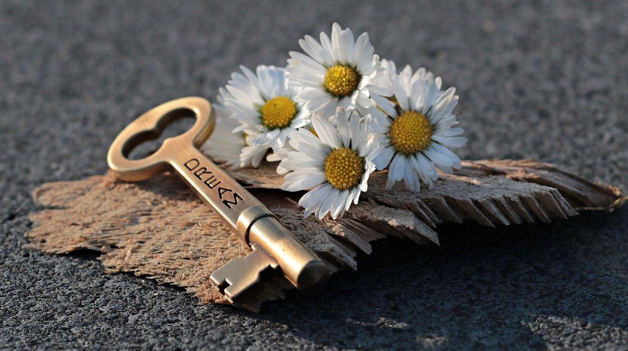 key, heart, daisy